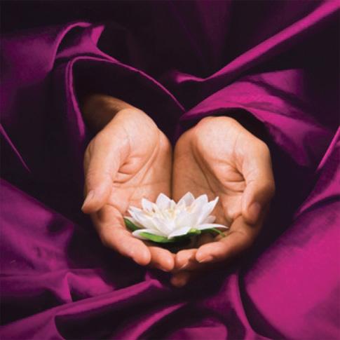 handen-bloem